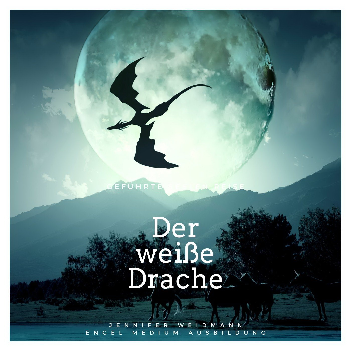 cd cover traumreise white dragon